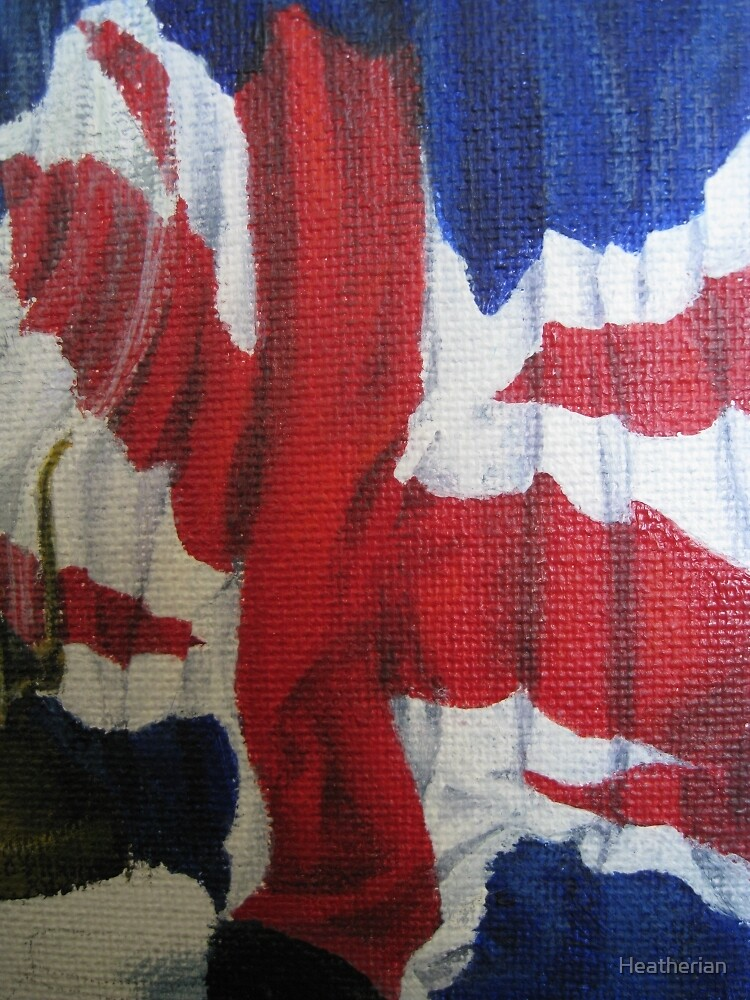 Flag  by Heatherian