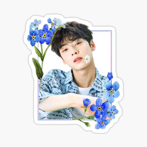 Eun Woo 2 Pegatina