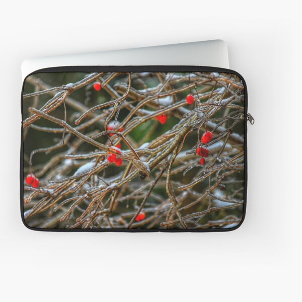 Frosty berries Laptop Sleeve