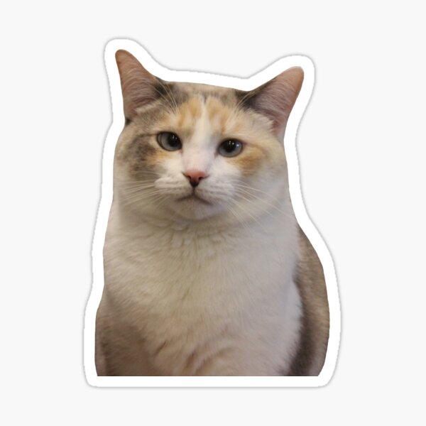 Grumpy Panko Sticker