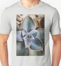 close up of succulent Unisex T-Shirt