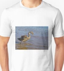 Cygnet T-Shirt