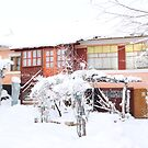 Our House This Morning - Winter, Romania by Dennis Melling