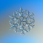 Gardener's dream, real snowflake macro photo by Alexey Kljatov