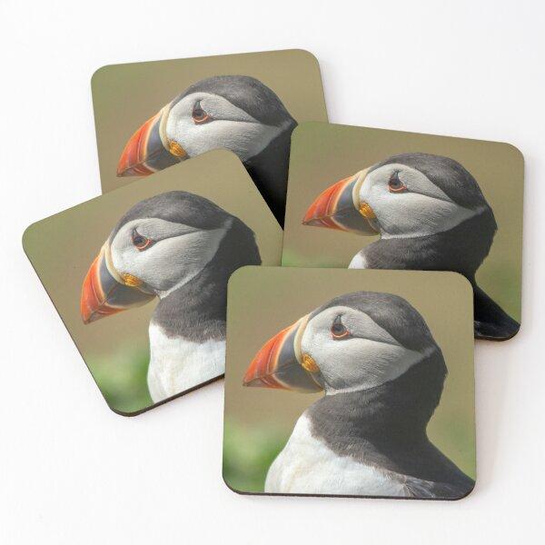Skomer Puffin Coasters (Set of 4)