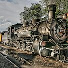 Silverton & Durango - Locomotive  by Marilyn Cornwell