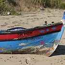 The Old Boat  by clizzio