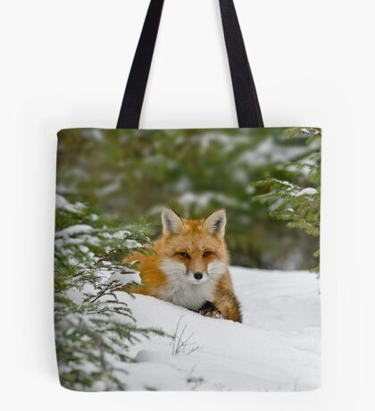Red Fox In Snow Tote Bag
