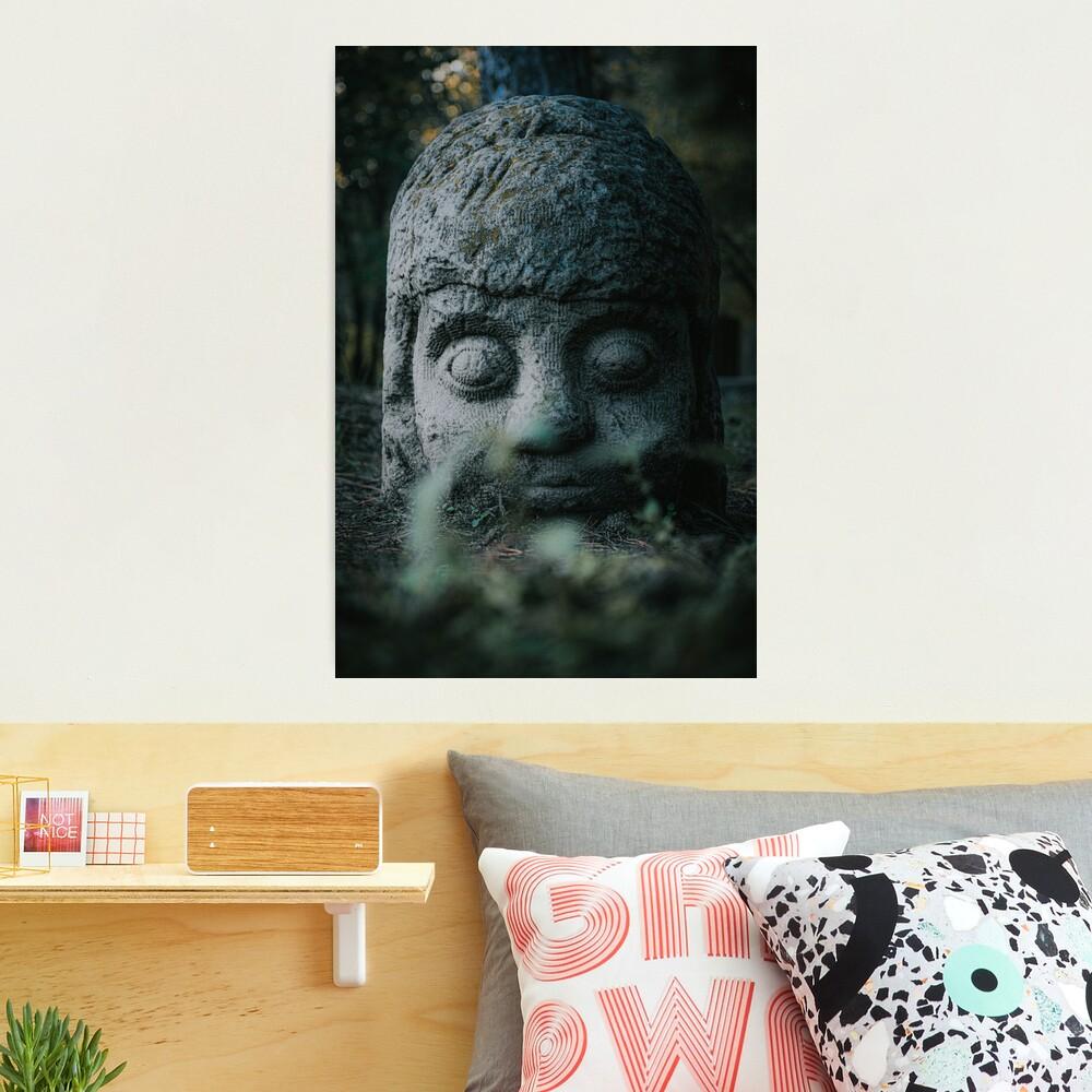Stone Head  Photographic Print
