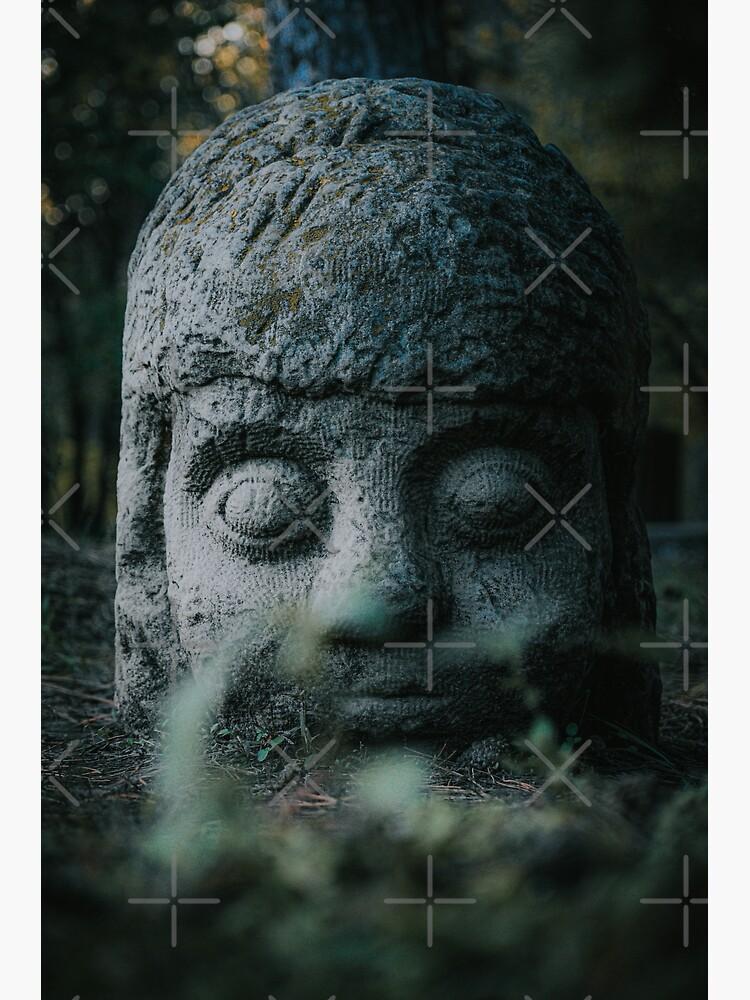 Stone Head  by didssph-prints