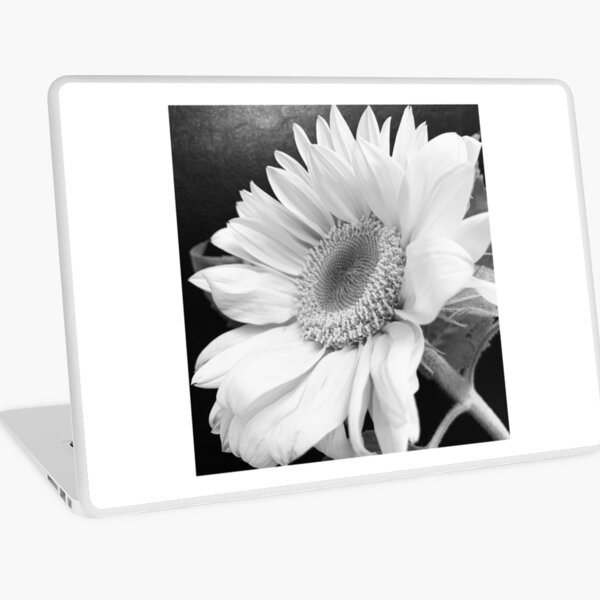 Sunflower black and white close up. Laptop Skin