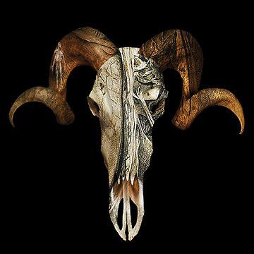 Godisnowhere666 Skull  by godisnowhere666