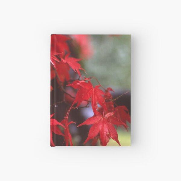 Autumn Acer Hardcover Journal