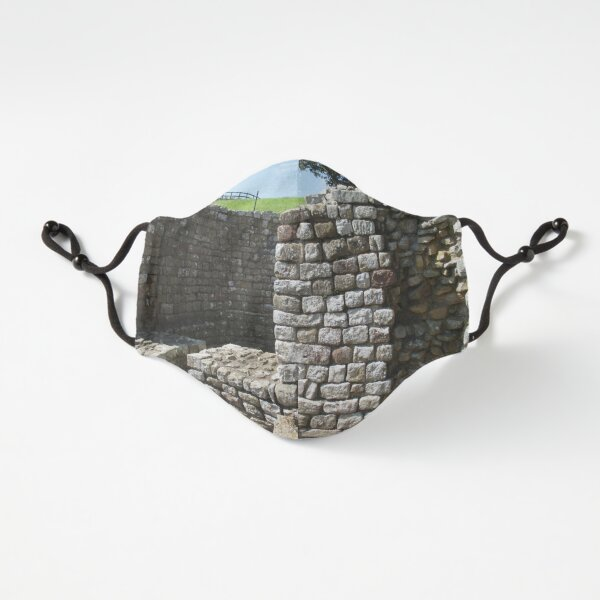 Merch #106 -- Architecture Alcoves (Hadrian's Wall) Fitted 3-Layer