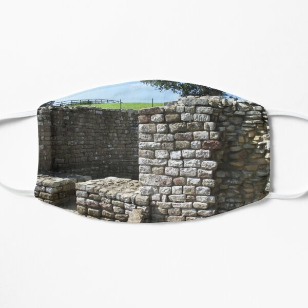 Merch #106 -- Architecture Alcoves (Hadrian's Wall) Mask