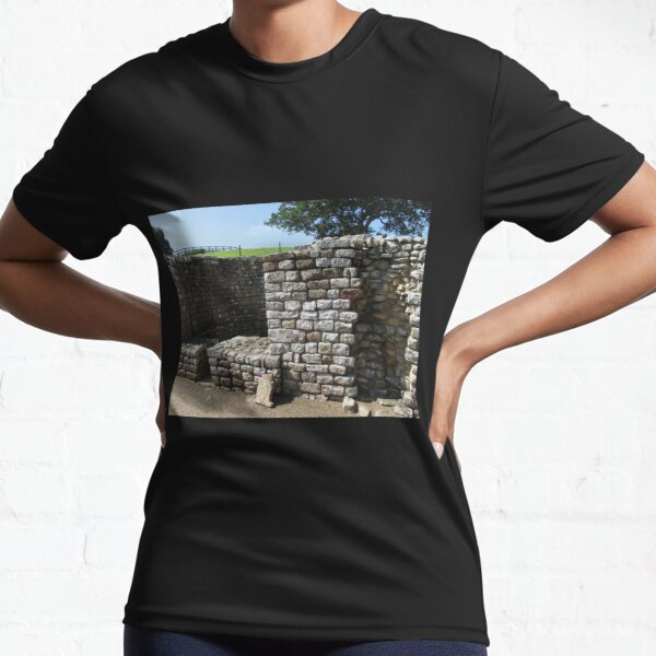 Merch #106 -- Architecture Alcoves (Hadrian's Wall) Active T-Shirt
