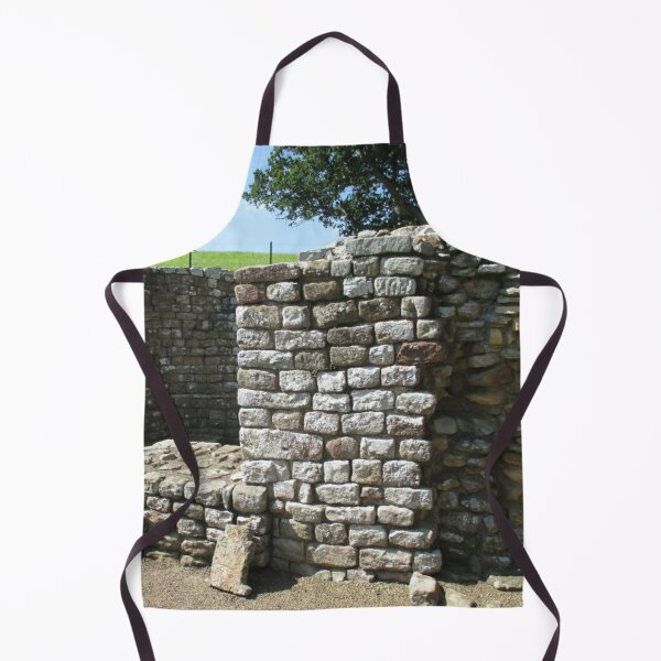 Merch #106 -- Architecture Alcoves (Hadrian's Wall) Apron