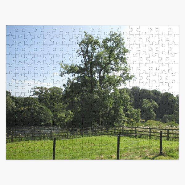 Merch #107 -- Tall Central Tree (Hadrian's Wall) Jigsaw Puzzle