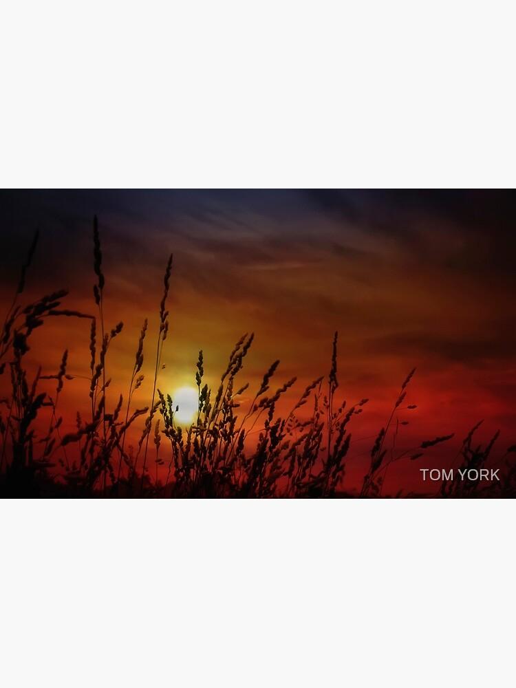Nocturnal Sunset by tekten67