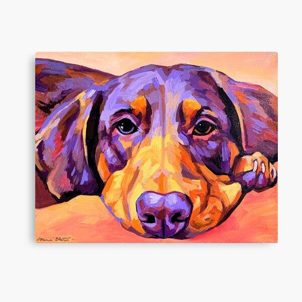 Dachshund Face Canvas Print