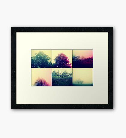 Foggy Impact Framed Print