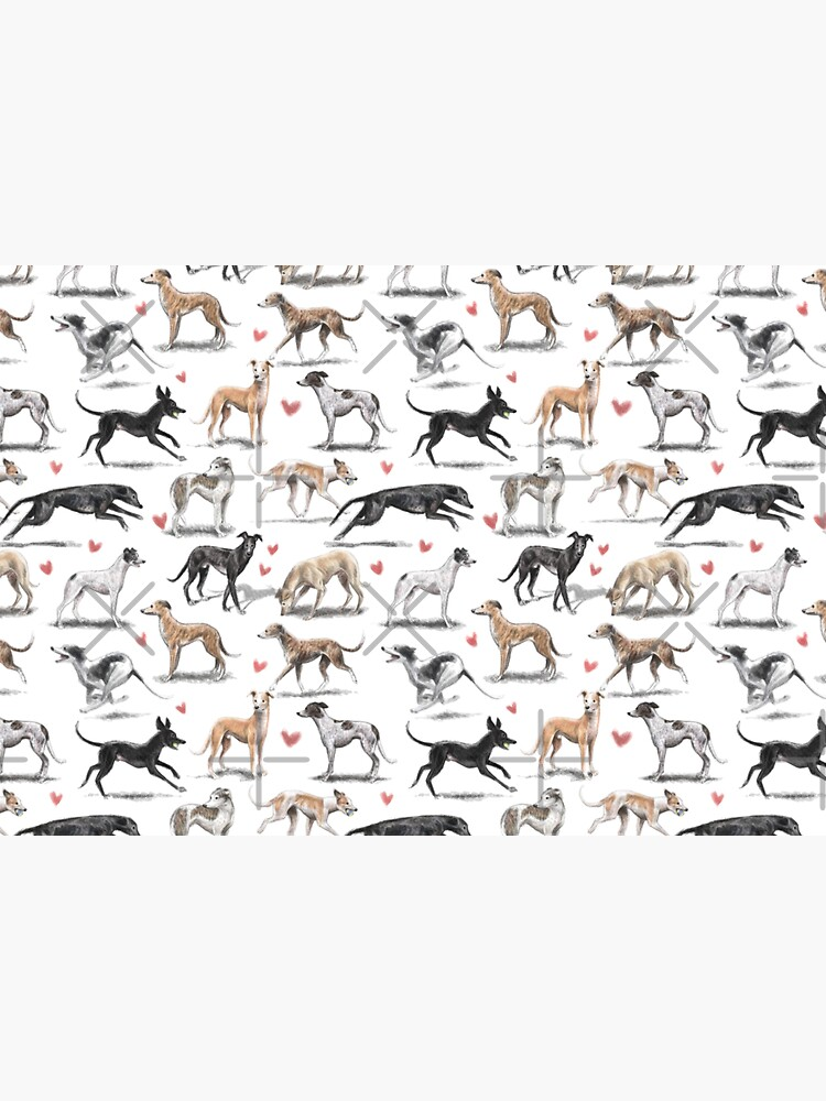 Greyhounds by elspethrose