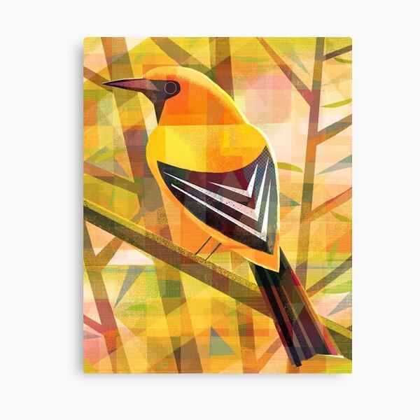 Yellow Oriole Canvas Print