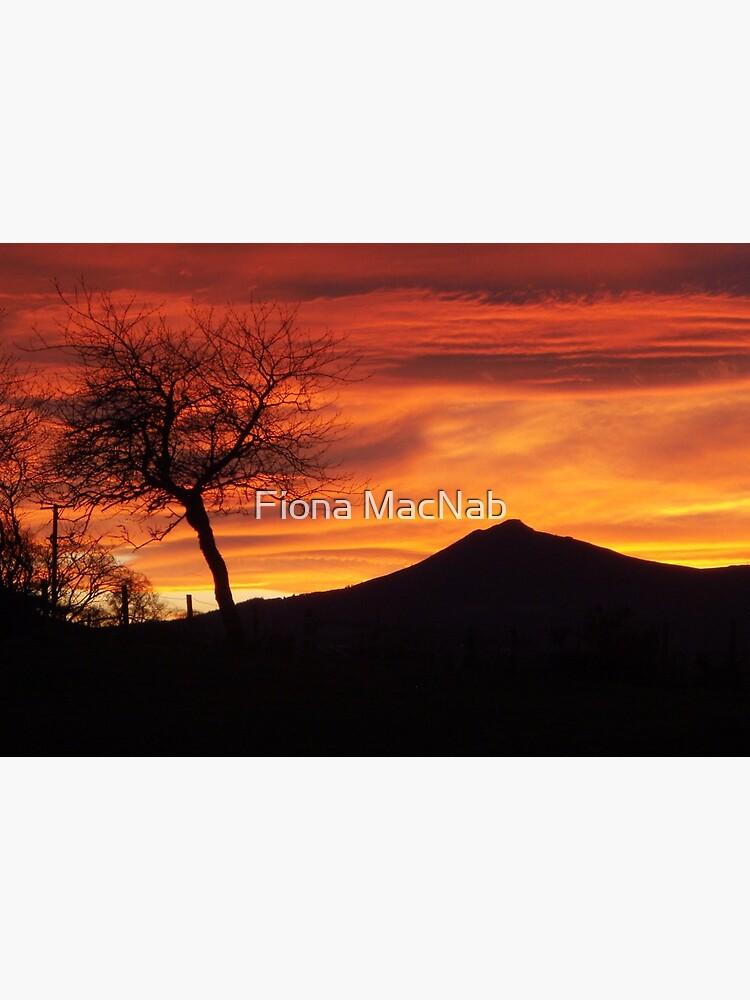 Bennachie sunset by orcadia