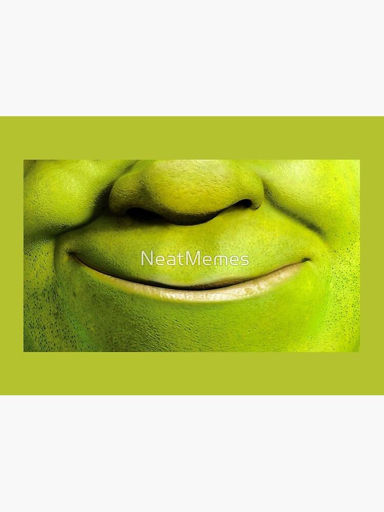 Shrek Mask by NeatMemes