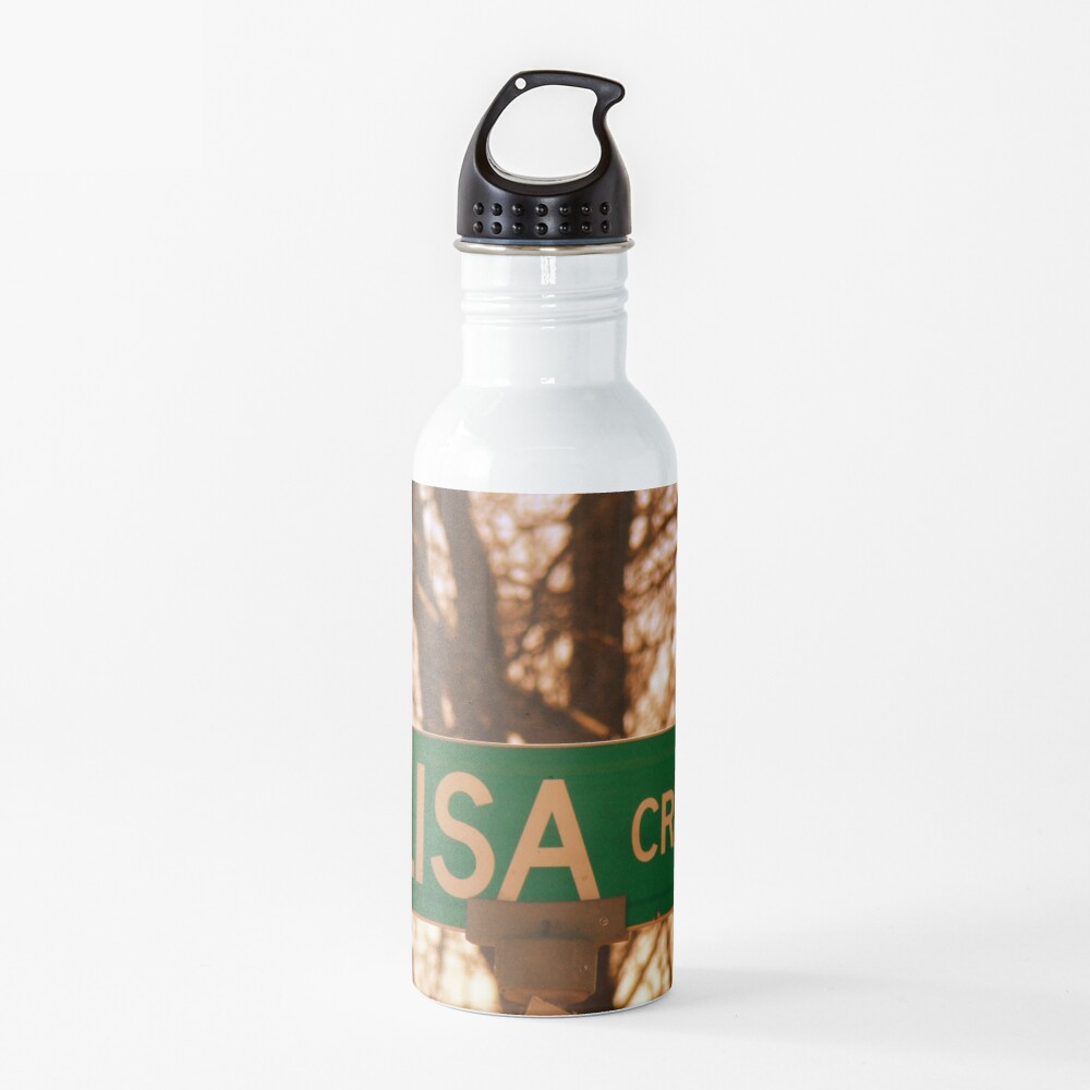 Lisa sticker, Lisa magnet, Lisa mug, Lisa greeting card  Water Bottle