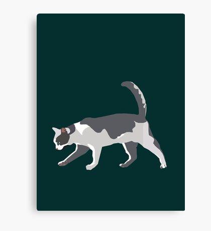 Slinky Grey Cat Canvas Print