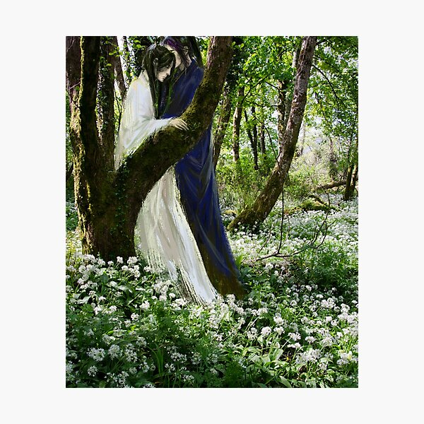 ramson in bloom Photographic Print