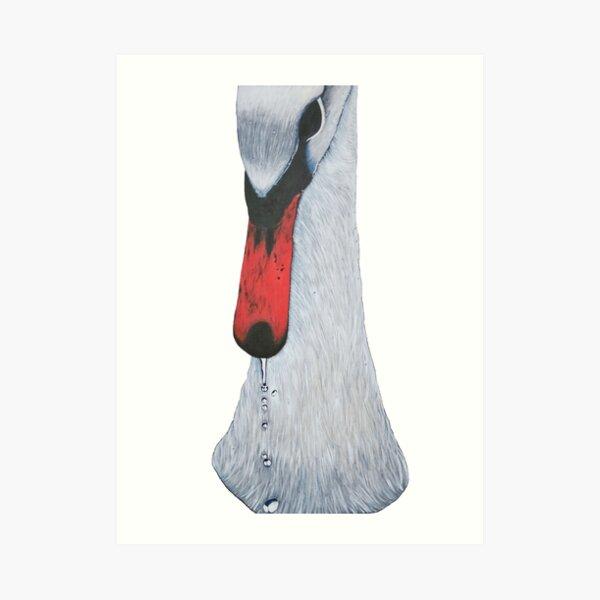 Erhabener Schwan mit Wassertropfen II Kunstdruck