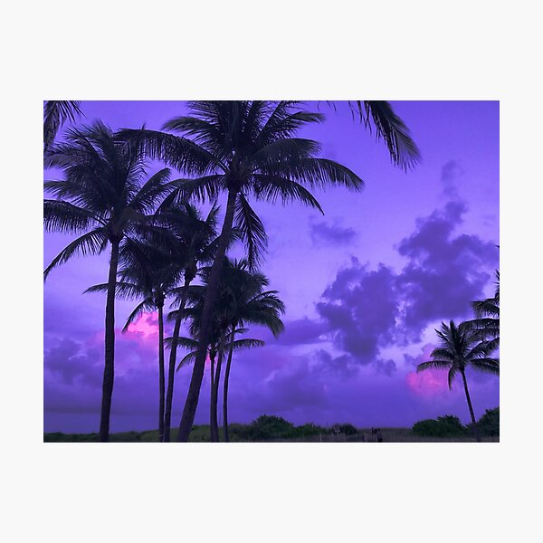 Lilac Sky Photographic Print