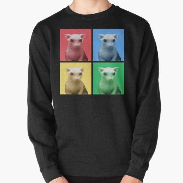 Bingus Color Panel Pullover Sweatshirt