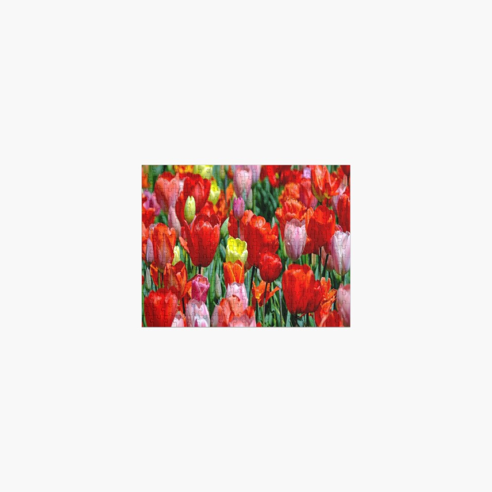 tulips pillow flowers Jigsaw Puzzle
