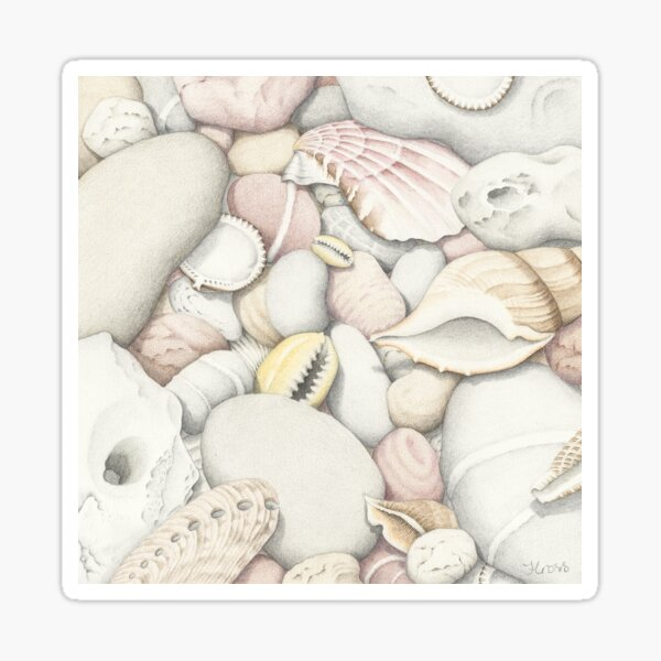 Shells and Pebbles Sticker