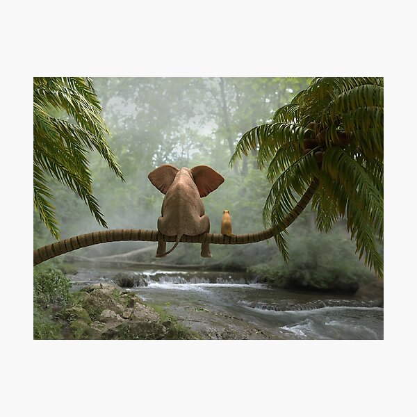 elephant and dog sit on a palm tree in tropical forest Photographic Print