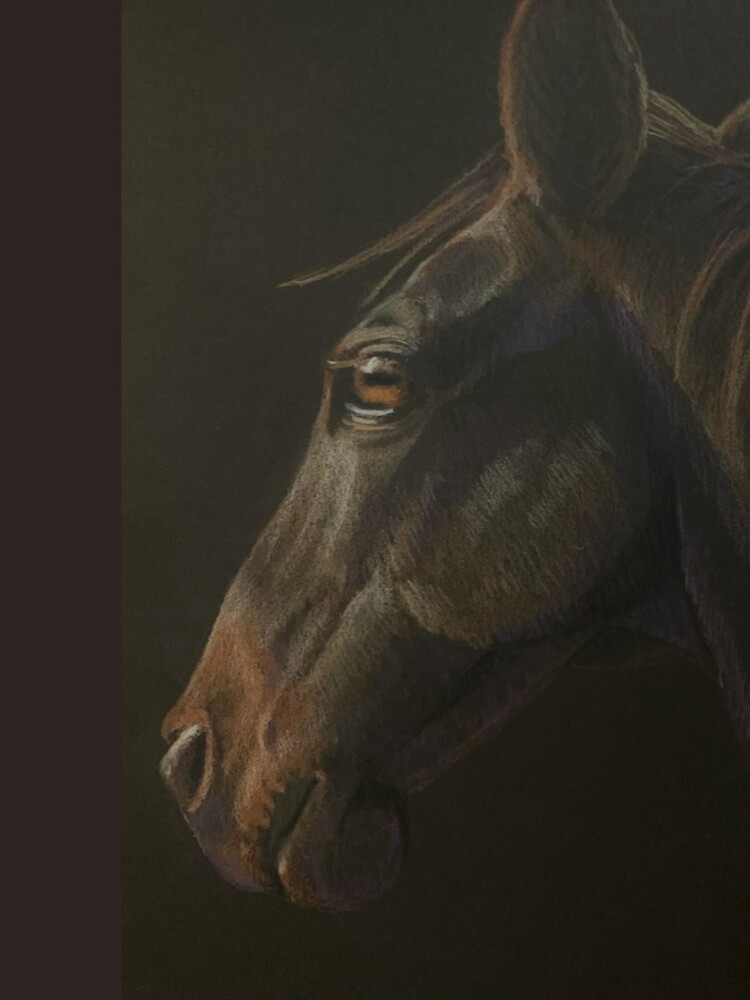 Quarter Horse by WyoClements