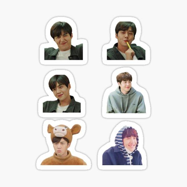 Kim Seon Ho Pack Sticker
