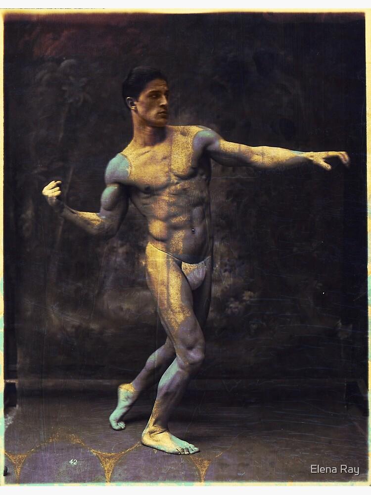 Vintage Boxer Modern Art by ElenaRay