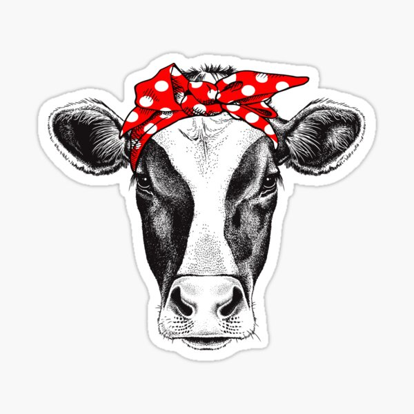 Funny Beautiful Cow Sticker