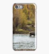 Moose in Mid-Stream iPhone Case/Skin