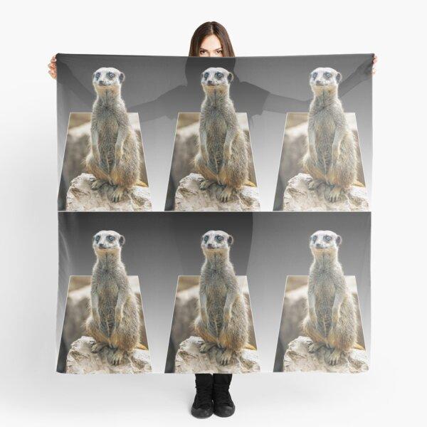 Meerkat Love Scarf