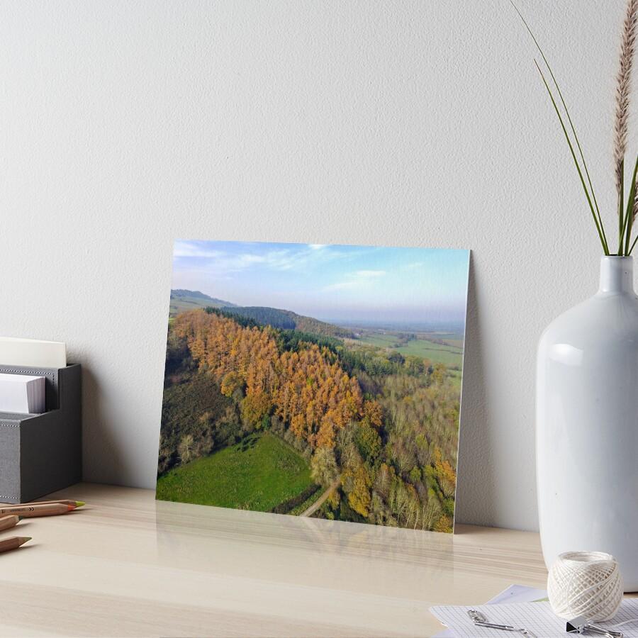 Above Autumn Art Board Print