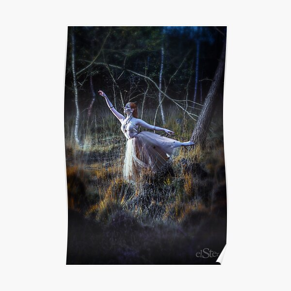 Ballerina in the heather Poster