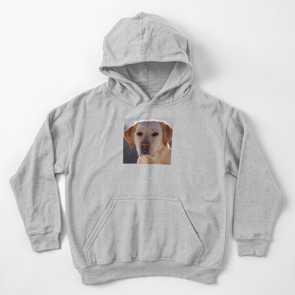 Portrait of A Golden Labrador Dog Kids Pullover Hoodie