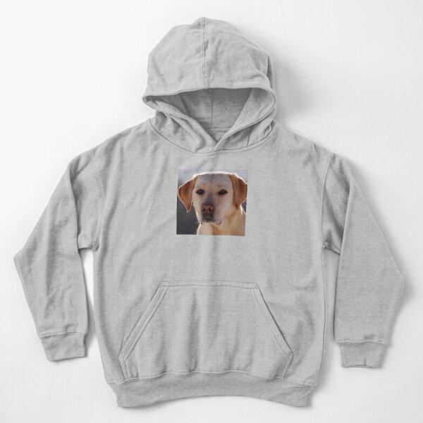 Porträt eines goldenen Labrador-Hundes Kinder Hoodie