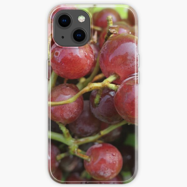 Grapes on the vine iPhone Soft Case
