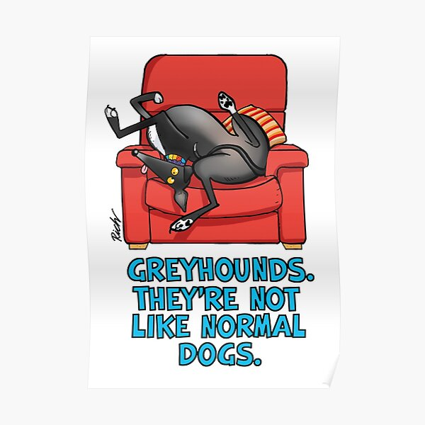 They're not like normal dogs Poster
